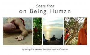 people meditating, moving, dancing, walking in nature